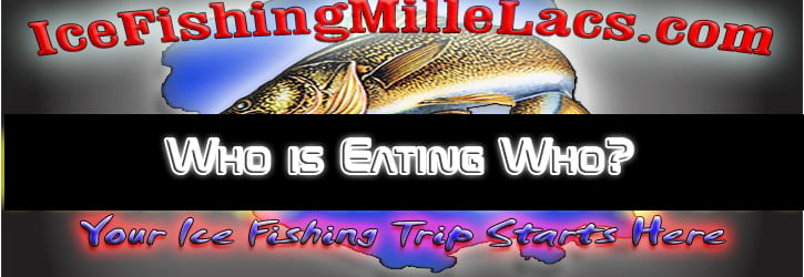Who is Eating Who on Mille Lacs?
